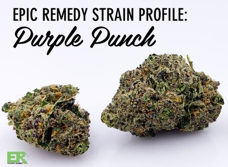 Epic Remedy Strain Profile: Purple Punch