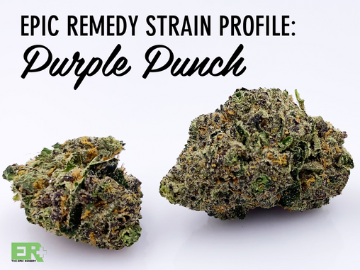 Epic Remedy Strain Profile: Purple Punch