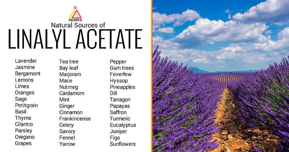 natural sources of linalyl acetate terpenes