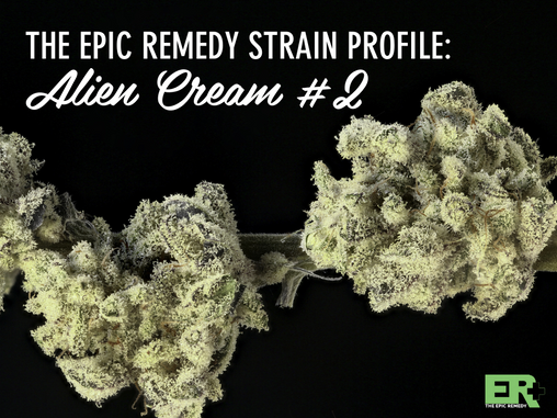 Epic Remedy Strain Profile: Alien Cream #2