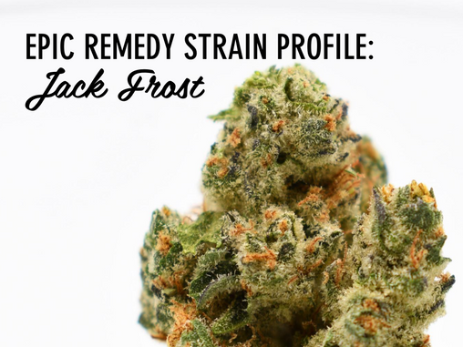 Epic Remedy Strain Profile: Jack Frost