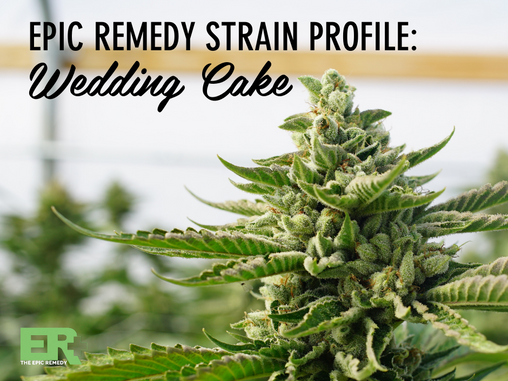 Epic Remedy Strain Profile: Wedding Cake