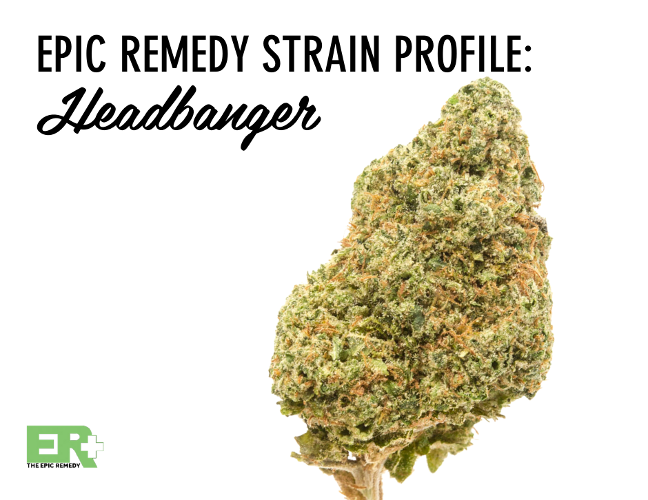 Headbanger strain profile and review by The Epic Remedy Colorado Springs best medical dispensary