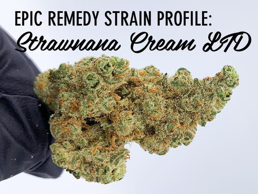 Epic Remedy Strain Profile: Strawbanana Cream LTD
