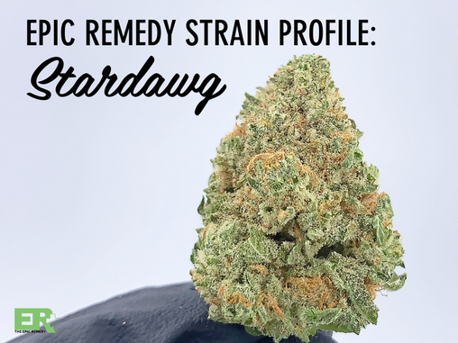 Epic remedy Strain Profile: StarDawg