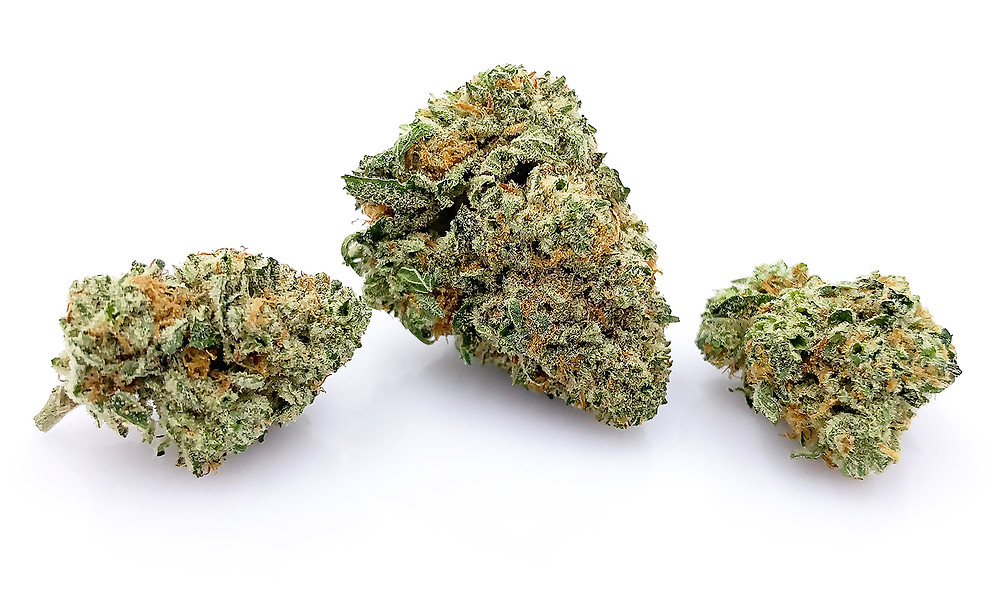stardawg strain profile by the epic remedy