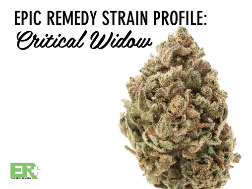 Epic Remedy Strain Profile: Critical Widow