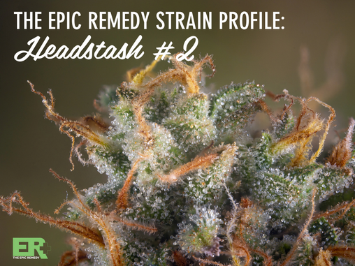 Epic Remedy Strain Profile: Headstash #2