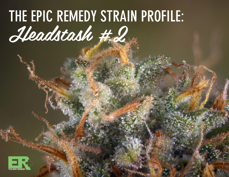 Headstash #2 Strain Profile and Review by The Epic Remedy - Colorado Springs' Best Dispensary
