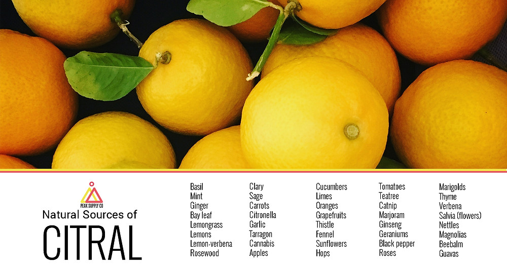 Natural sources of citral terpenes in plants fruits and flowers