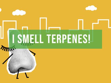 I Smell Terpenes!