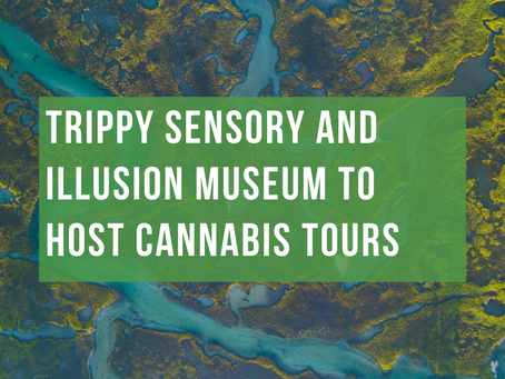 Trippy Sensory and Illusion Museum to Host Cannabis Tours
