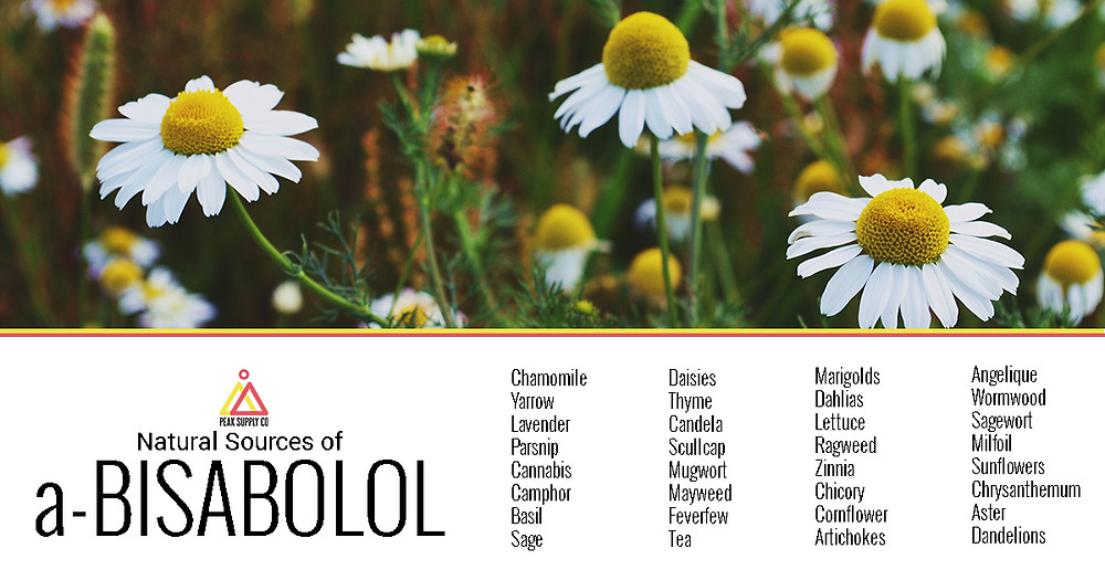 Natural Sources of a-Bisabolol terpenes