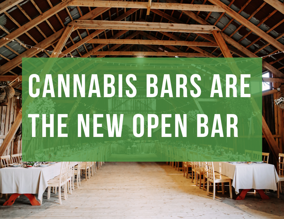 cannabis bars are the new open bars by chi high tours chicagos best cannabis tour