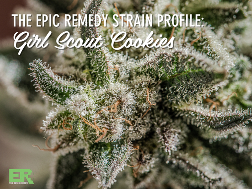 Epic Remedy Strain Profile: Girl Scout Cookies (GSC)