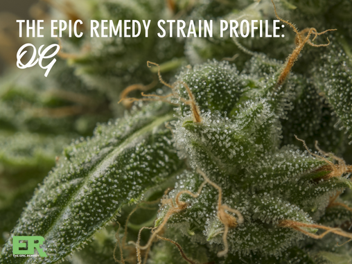 Epic Remedy Strain Profile: OG