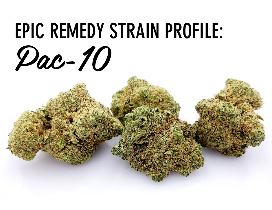 Pac-10 cannabis flowers by The Epic Remedy