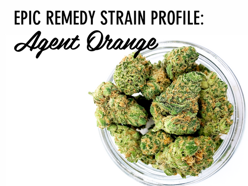 Epic Remedy Strain Profile: Agent Orange