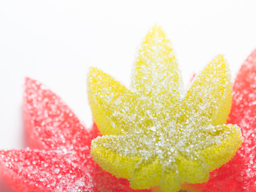 The Lowdown on Epic Remedy Edibles