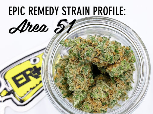 Epic Remedy Strain Profile: Area 51