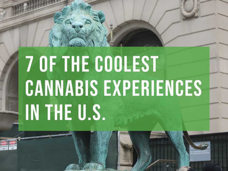 7 Of The Coolest Cannabis Experiences In The U.S.