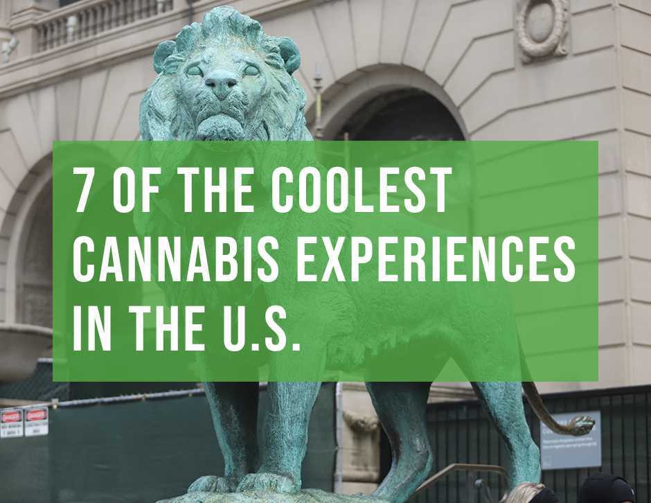 7 of the best 420-friendly cannabis experiences in the united states by chi high tours chicagos finest cannabis tour
