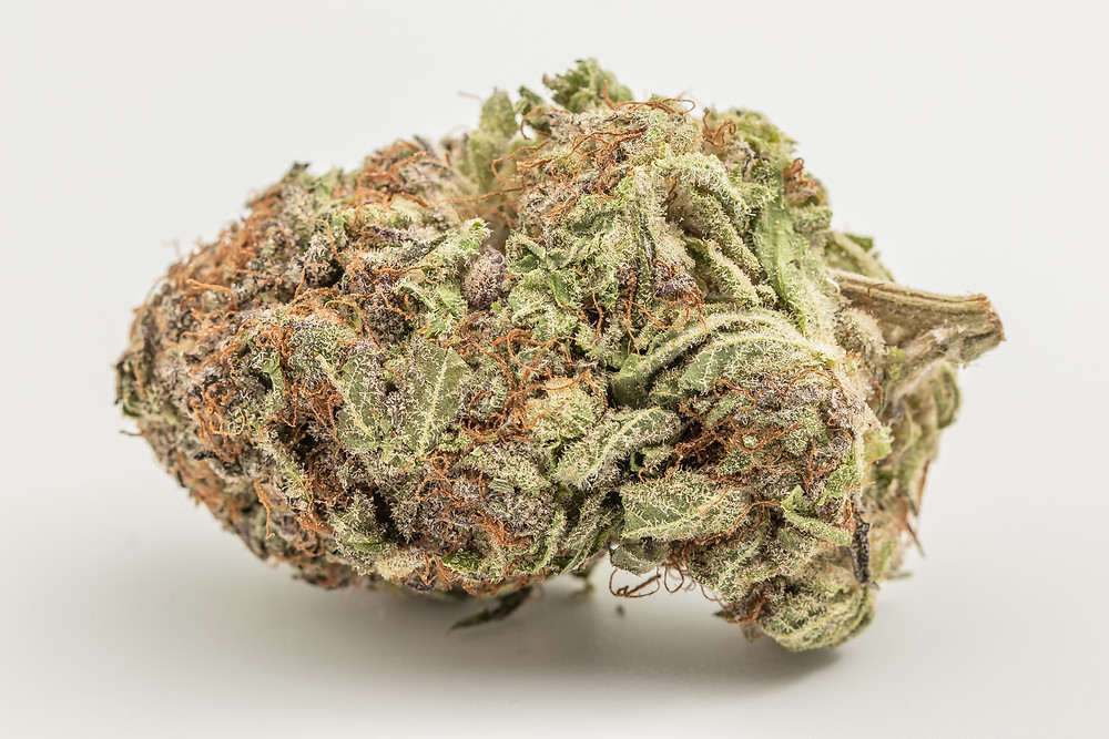 bordello strain profile and review by the epic remedy the best dispensary in colorado springs