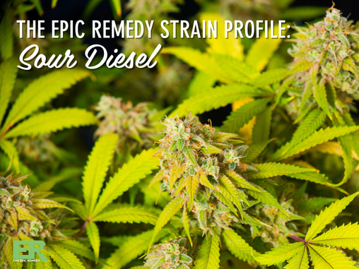 Epic remedy Strain Profile: Sour Diesel