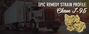Epic Remedy Chem I-95 Strain Profile | Epic Remedy Chem I-95 Strain Review
