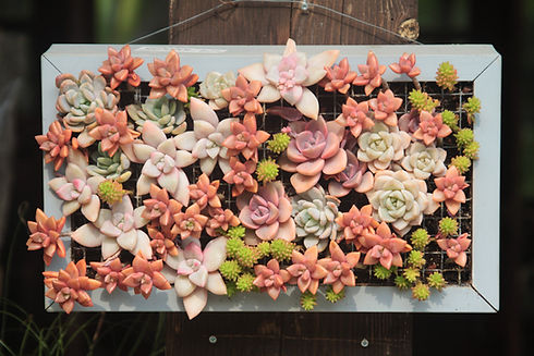 Flower Bed Decoration
