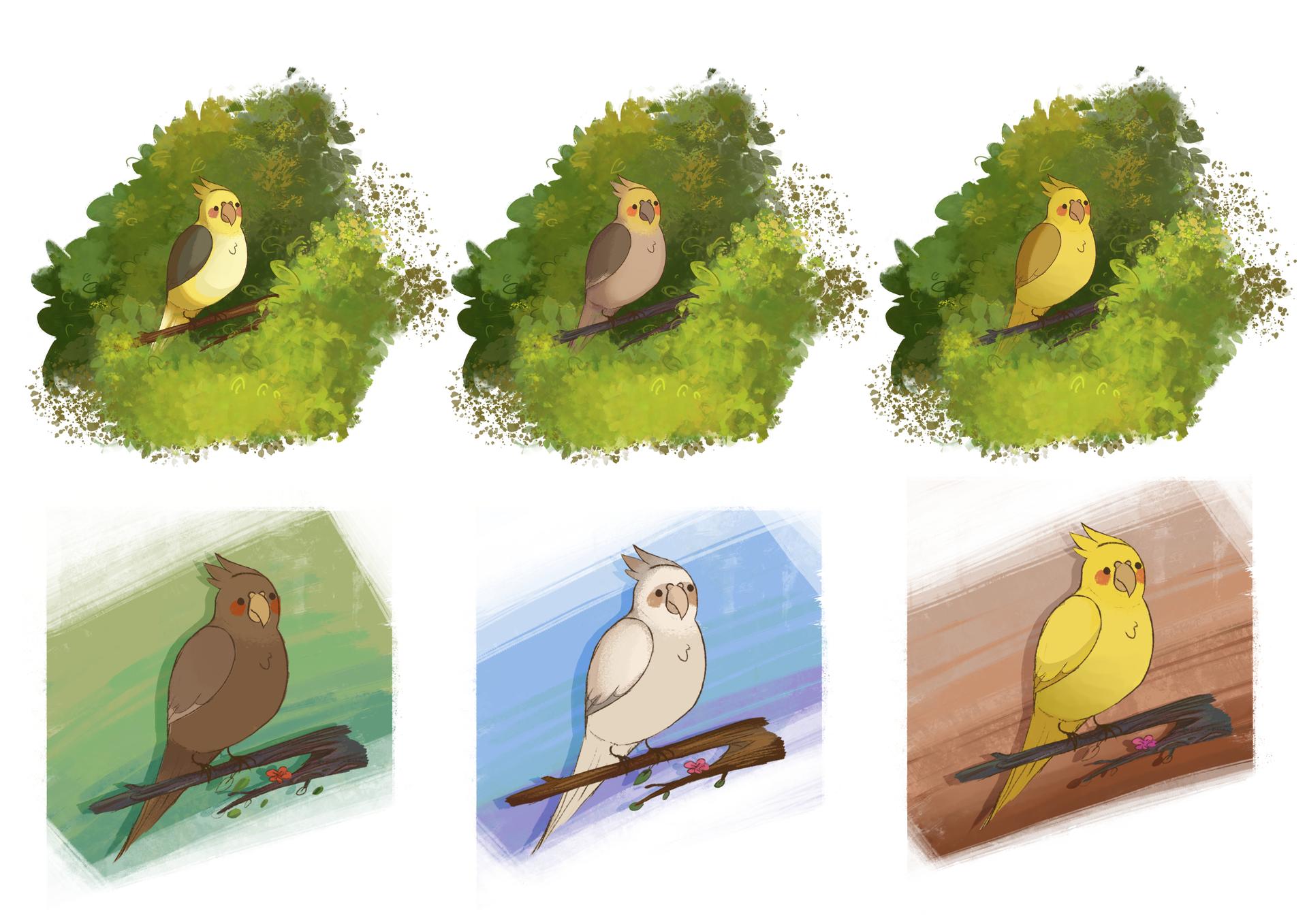 Bird Colour Tests