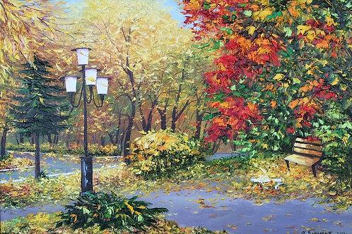Клены в парке