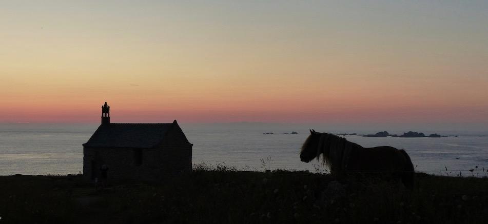cheval au couchant 2