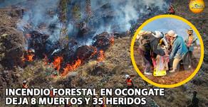 Tragedia en Cusco: incendio forestal en Ocongate deja ocho muertos y 35 heridos
