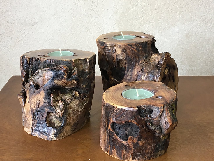 Locust Candle Holders