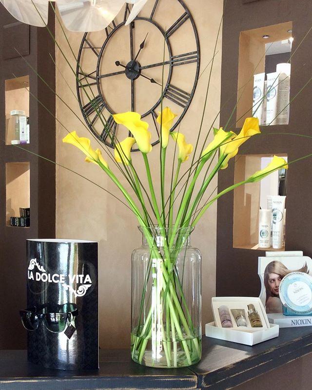 Buona serata a tutti!_#fiore #costasmeralda #fiori #calle #giallo #virtuhairconcept #sardegna #canni