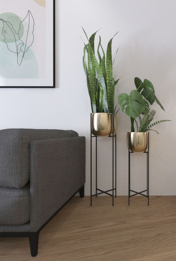 residential space grey sofa flowers plan