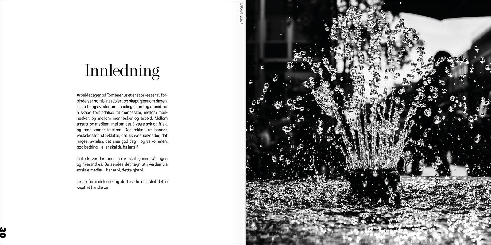 bokdesign-psyke-samfunnstemmer (15).jpg