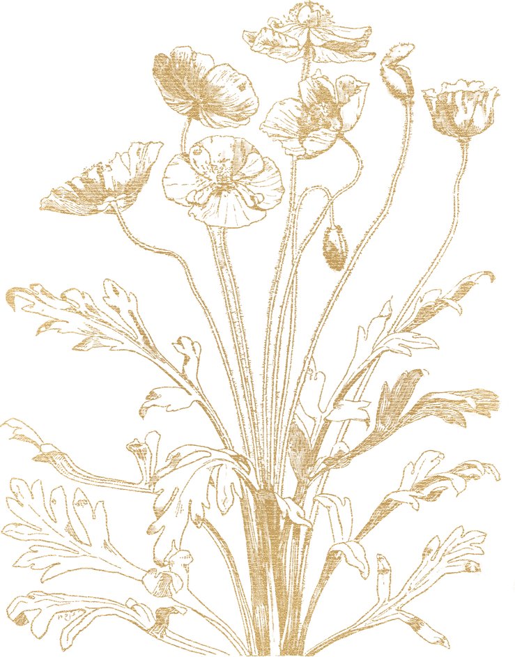Gold botanical flowers 11.png