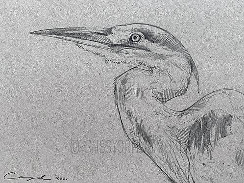 "*ORIGINAL* ""Heron Sketch"" - Graphite"