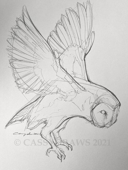 """""""In Flight"""" - Graphite Sketch."""