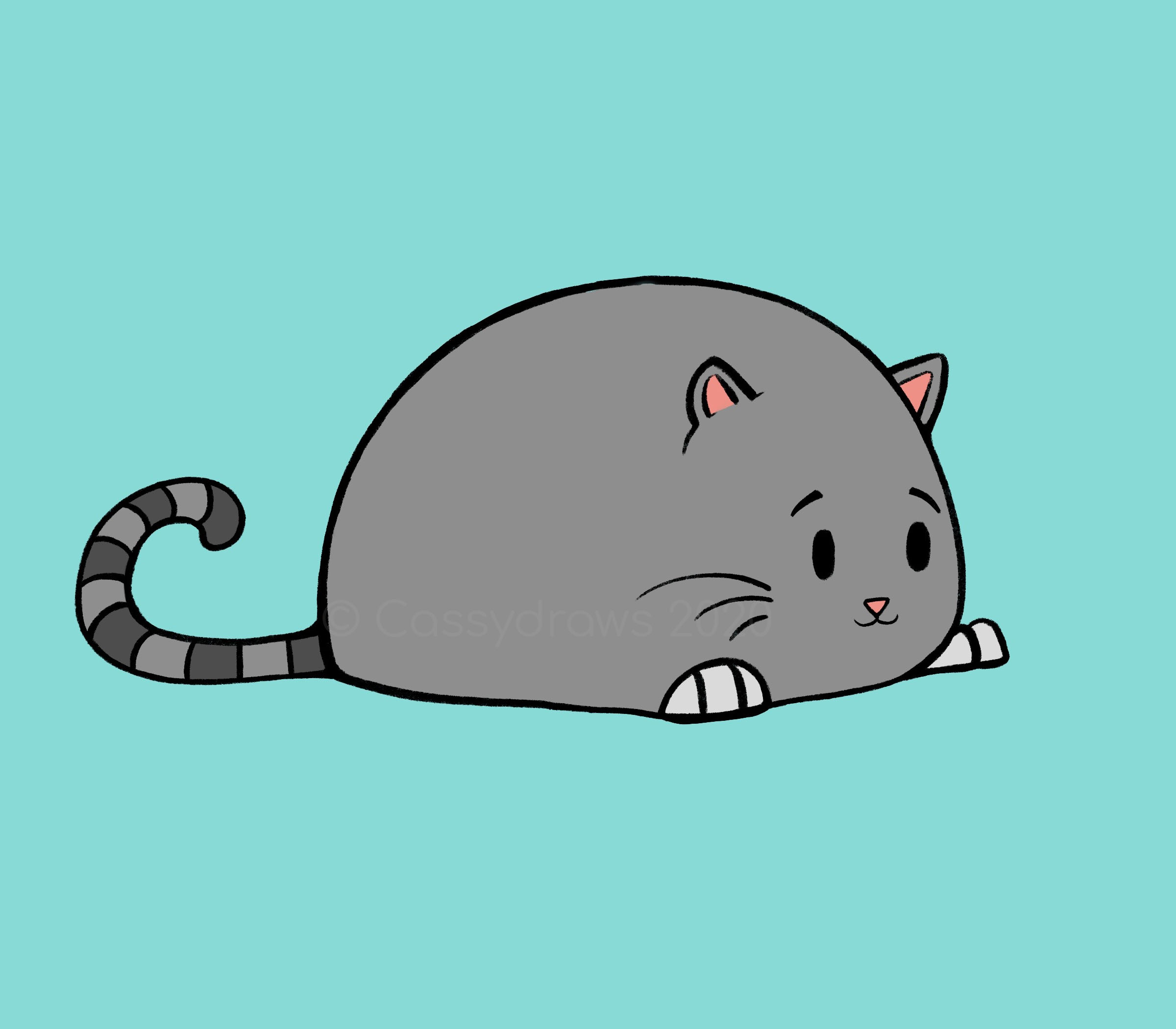 """Chonky Cat"""