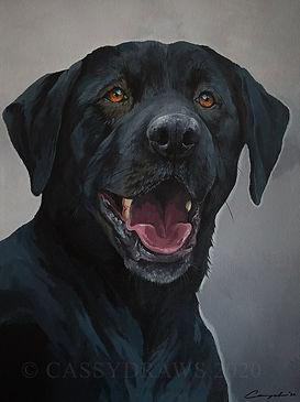 Doggo1.jpg