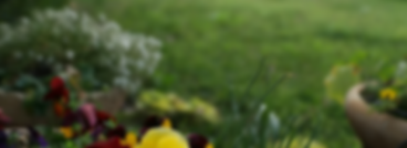 landscaping header background