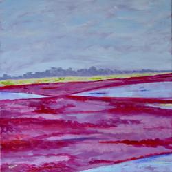 Cranberry Marsh