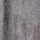 Thumbnail: Timeless Plank