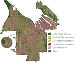 Urban tree canopy, possible planting area, and area unsuitable for UTC in the City of Tacoma
