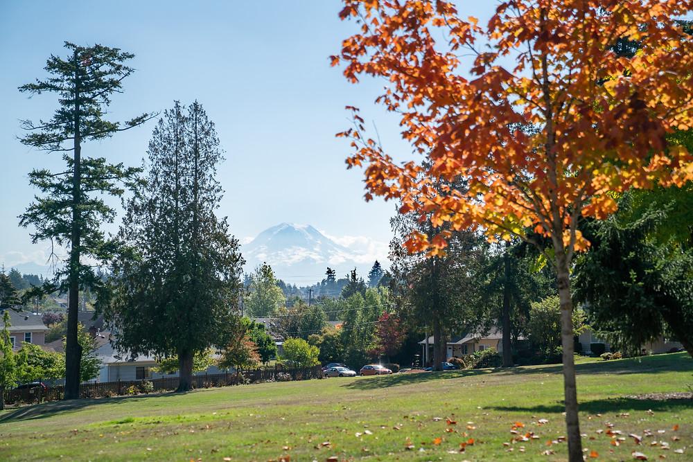 Tacoma, WA park with trees and mountain