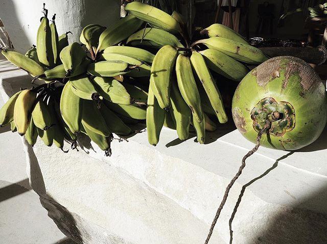 Bananas and Coconuts