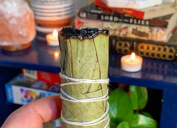 Eucalyptus Sage Bundle
